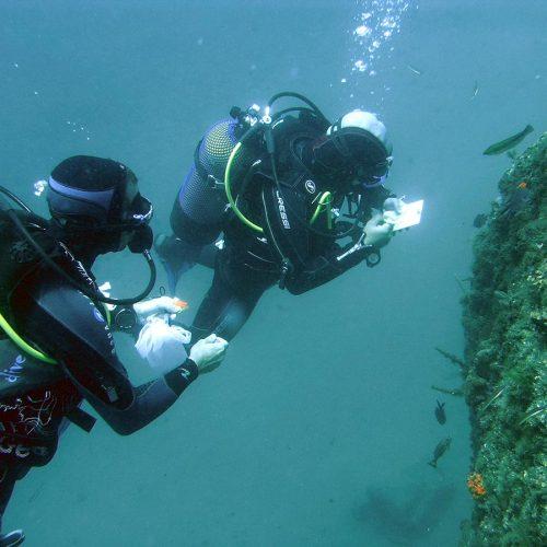 Técnicas de muestreo en el medio marino